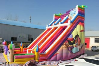 Waterproof Large Inflatable Slide Colorful Aladdin Inflatable Double Lane Slide